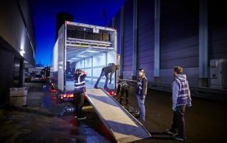 Mega double deck box trailer1